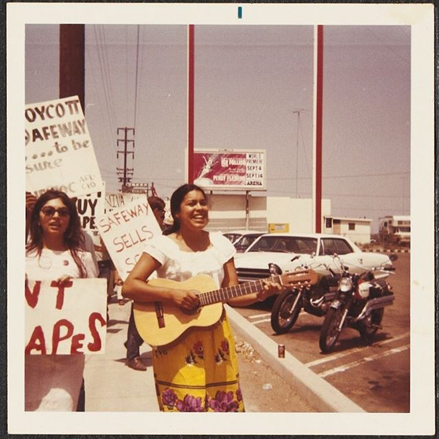 Safeway - United Farm Worker's Grape Boycott, #NationalCity #SANDIEGO Herman Baca Collection at Special Collections & Archives, #UCSanDiego. 1970