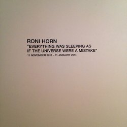 Hauser & Wirth - Roni Horn: Everything was sleeping as if the universe were a mistake. - New York, NY, United States